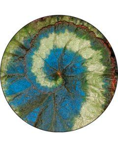 Spiral leaf gobo