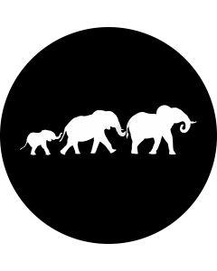Elephants gobo